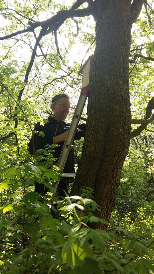 17 Vogelkästen hängen jetzt im Rhodepark